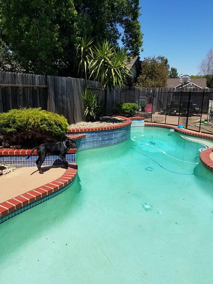 Pool brick 5