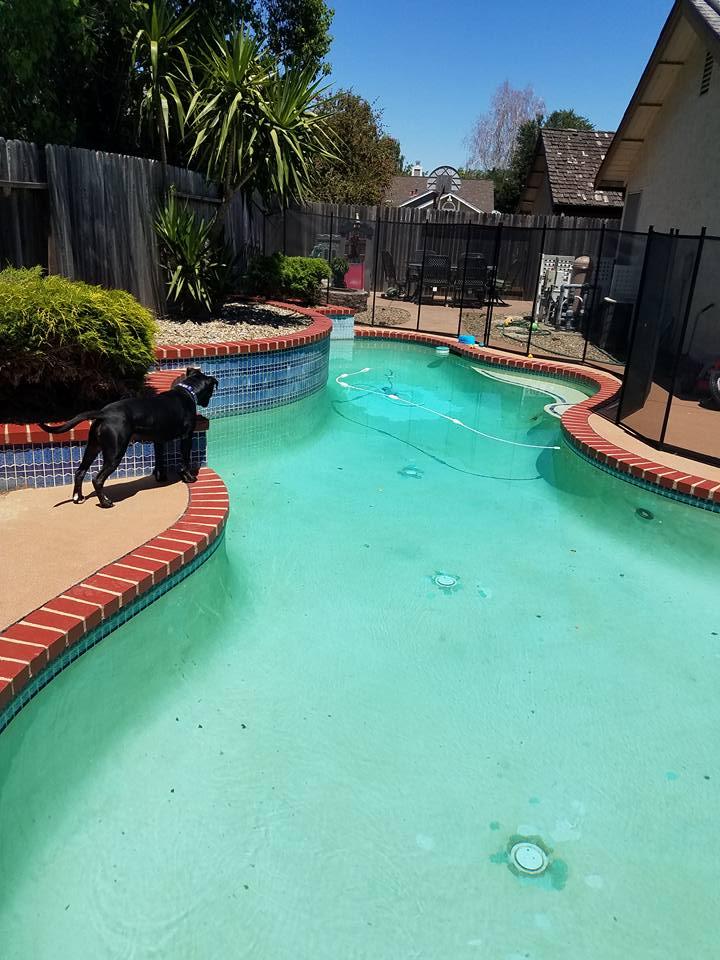 Pool brick 6